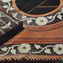 AMÁLIA  & VINICIUS