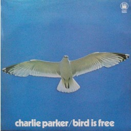 BIRD IS FREE