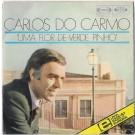 UMA FLOR DE VERDE PINHO (FESTIVAL TV 1976)